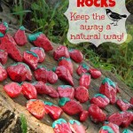 Fifteen İncredible DIY Garden Redecorating Ideas by using Rocks 13