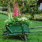 Fifteen Wonderful Landscaping and Gorgeous Centerpiece Ideas for Your Outdoor Places 13
