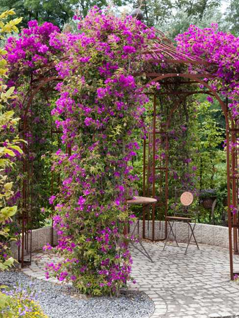 Fifteen Wonderful Landscaping and Gorgeous Centerpiece Ideas for Your Outdoor Places 14