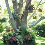 Fifteen Wonderful Landscaping and Gorgeous Centerpiece Ideas for Your Outdoor Place