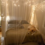 DIY String Lights For Your Home All Year Round Decor 9