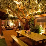 Great DIY Backyard Lighting Ideas 1