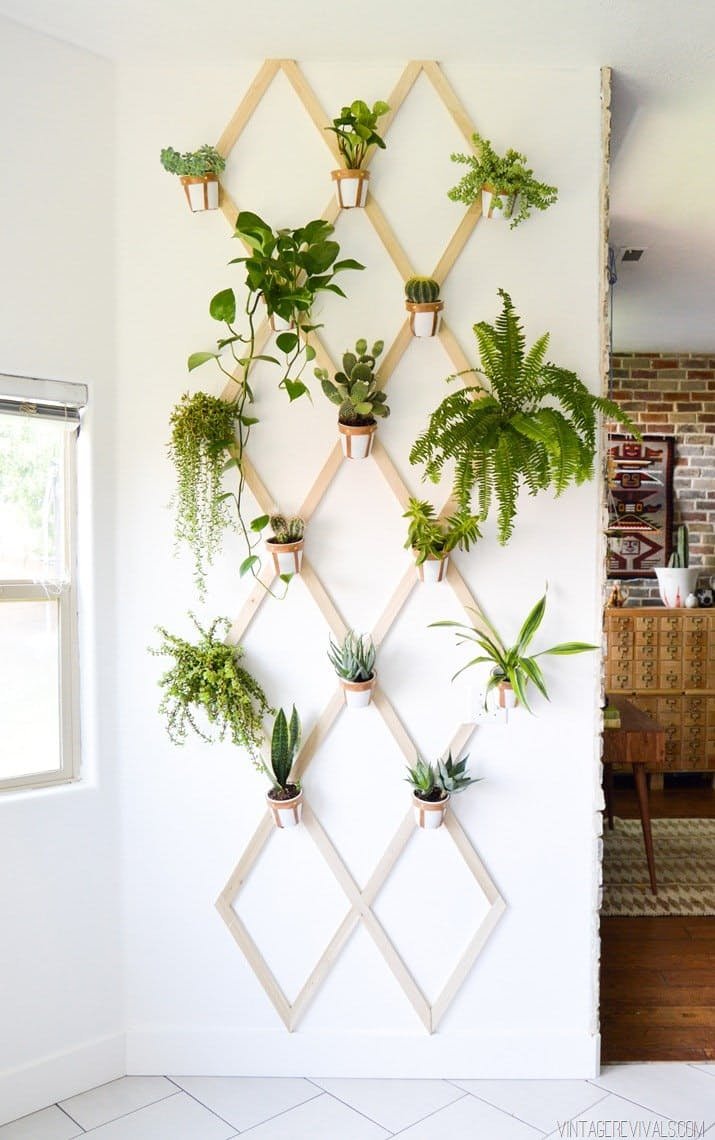 12.Wall Pattern Garden