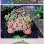 11.DIY Succulent Turtle