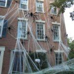 12.Shuddersome Spider Webs