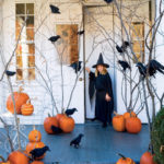 2.Halloween Dried Forest