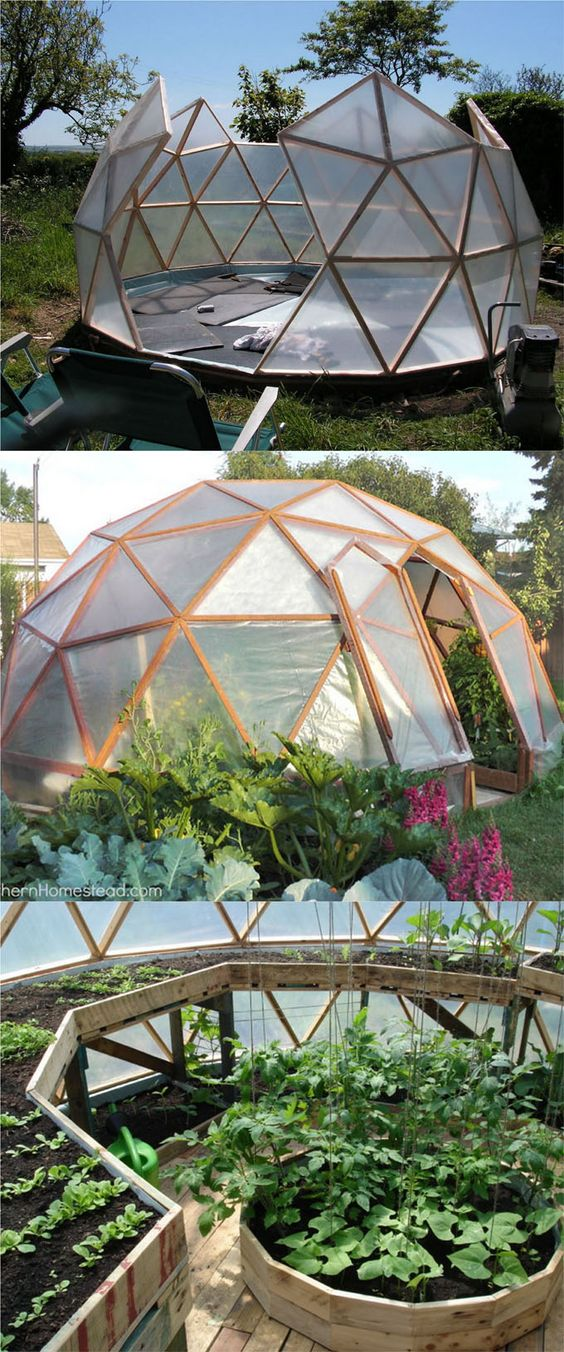 5. Igloo Greenhouse