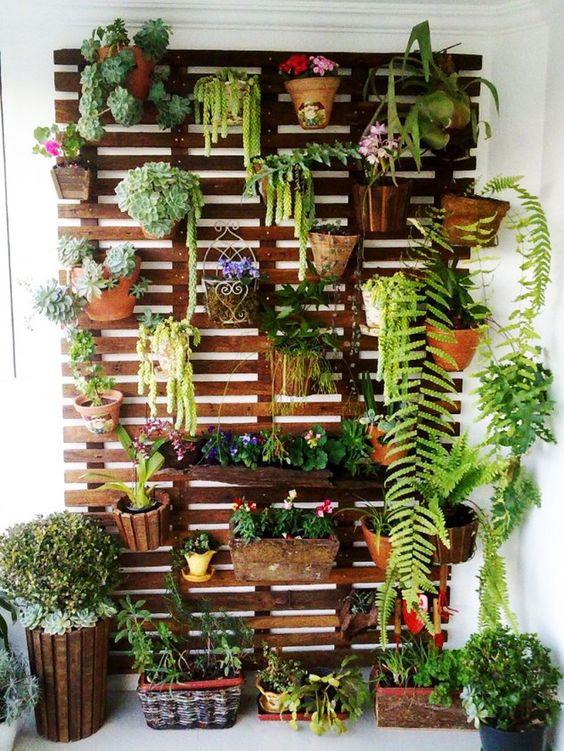 13. Wall Gardening